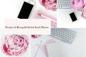 Peonies & Rosegold Stock Photos