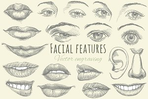 Set Facial features