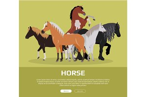 Horse Conceptual Flat Style Vector Web Banner
