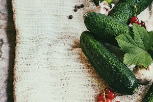 Fresh cucumbers prepared for pickling