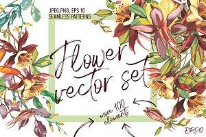 Flowers vector set:Crocosmia&Aquile