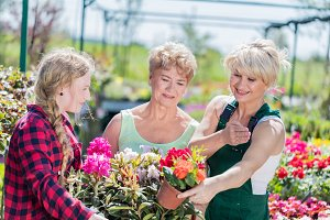 Grandmother and granddaughter choosing potted flowers.