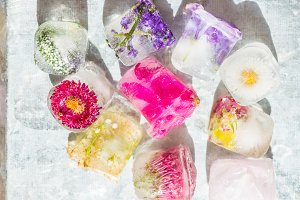 Frozen Flowers in Ice Cubes