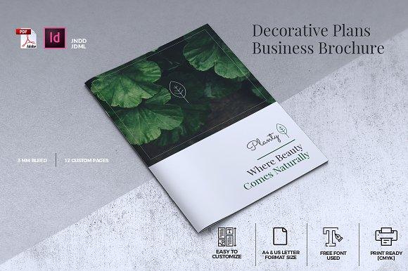 Decorative Plants Brochure A4