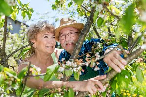 Cheerful senior couple portrait among tree branches.
