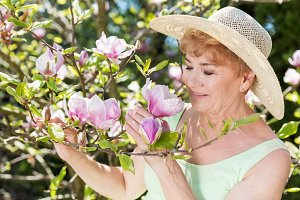 Attractive senior woman admiring magnolia flowers in a summer garden