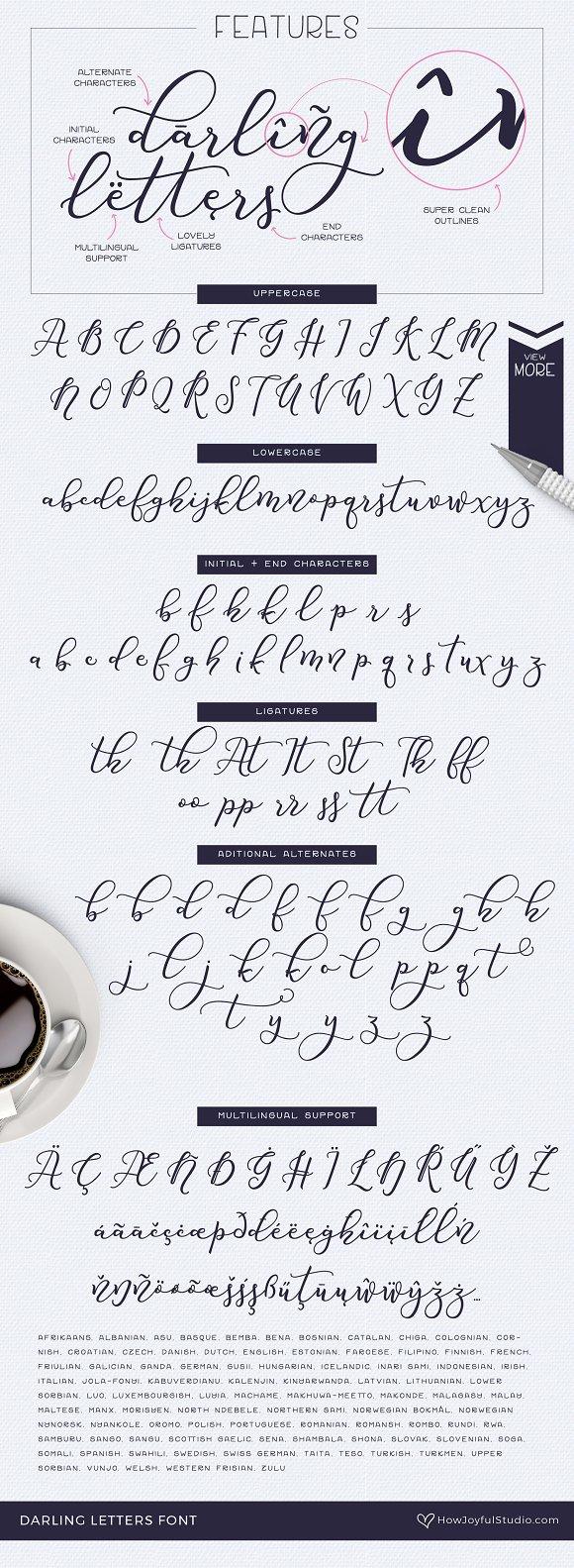Darling Letters Font Script Fonts Creative Market