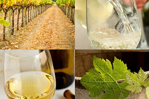 Wine industry collage