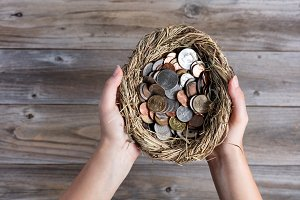Nest egg with Savings concept