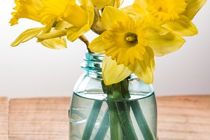 Yellow dafodills in blue jar