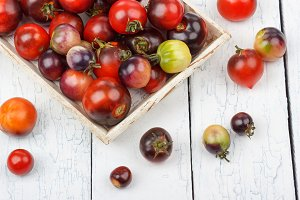 Different tomatoes in the white tray on the wooden table