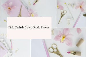 Pink Orchids Styed Stock Photos
