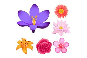 Gorgeous Flower Buds Isolated illustrations set