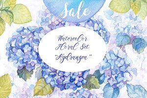 40% OFF Hydrangea Watercolor Flowers