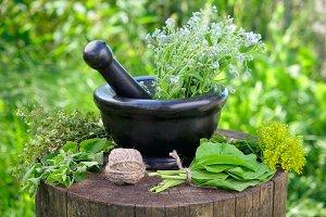 Healing herbs, mortar and pestle