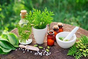 Homeopathy pills, Thuja and Plantain
