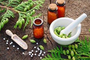 Homeopathy globules and Thuja twigs