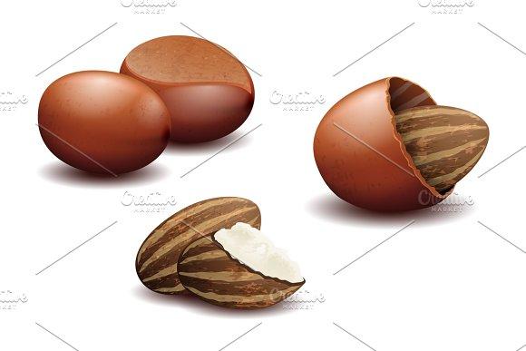 Shea Nuts And Shea Nut Butter