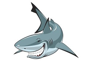 White cheerful shark