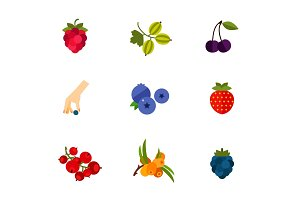 Berry fruit icon set