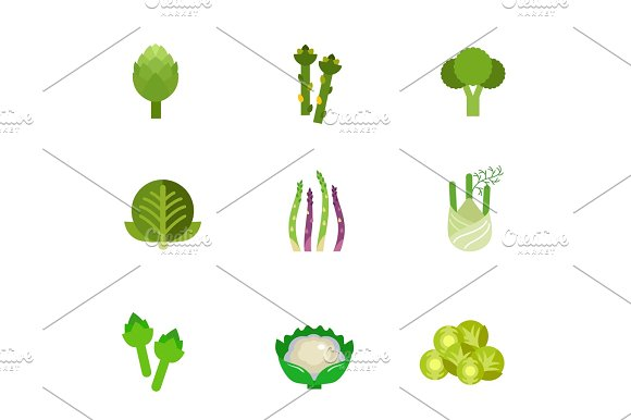 Green Vegetable Icon Set