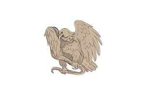 Serpent in Clutches of Eagle Drawing