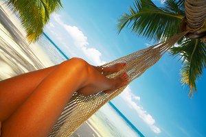 tropic hammock