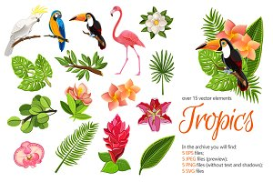 Tropic Forest Set