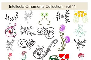 Intellecta Ornaments Collection vol