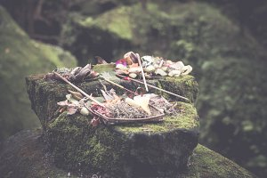 Traditional balinese offerings to gods in Bali with flowers and aromatic sticks. Bali island.