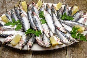 sardinas (2).jpg