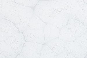 White cracked wall texture