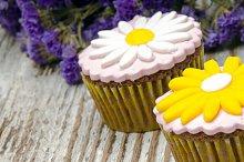 cupcakes (2).jpg