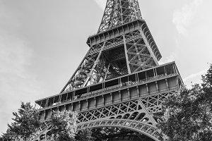Eiffel black and white