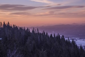Purple Sunrise in the Hills & Forest
