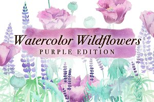 Watercolor Wildflowers in Purple