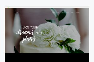 WordPress Website Theme- Boss Pro