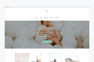 WordPress Website Theme- Gallery Pro