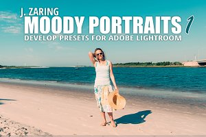 Moody Portraits 1 Lightroom Presets
