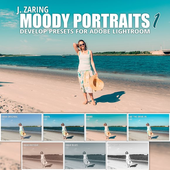 Moody Portraits 1 Lightroom Presets
