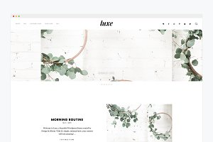 Minimal WordPress Theme- Luxe