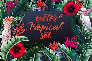 Vector Tropical design set