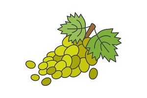 Branch of Green Grapes Flat Vector Icon