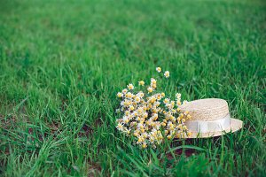 Straw hat and romantic wild-flower bunch bouquet on green grass lawn.