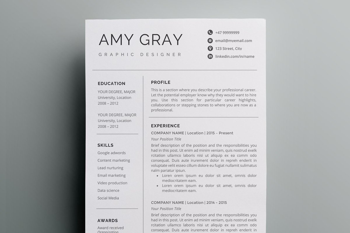 Professional Resume Template CV Templates Creative Market