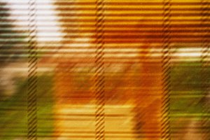 Warm and vivid shutter abstraction