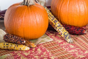 Orange pumpkins and corn