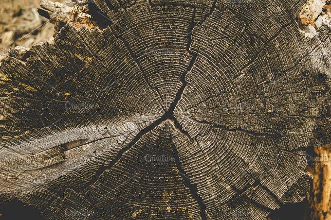Wood... - Nature