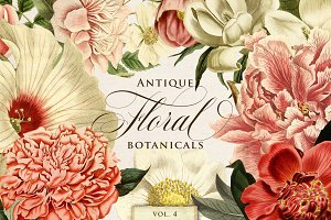 Antique Floral Botanical Graphics 4