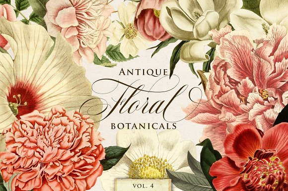 Antique Floral Botanical Graphics 4 - Objects